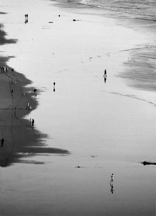 San Francisco's Ocean Beach   1002765